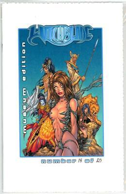 Tales Of Witchblade #1/2 Michael Turner Museum Edition Jay Company Coa Ltd 25