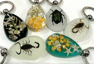 5pc lots fashion black spider black scorpion mix insect pendants FF03