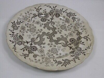 """Antique W Ridgways 10 1/4"""" Flosculous Brown Scalloped Dinner Plate c1835 HTF"""