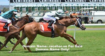 RACEHOR.SE Premium Top Level Domain Name for Sale Racehorse & Stud Owners