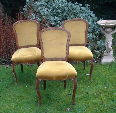 Antique Vintage three FRENCH louis revival style chairs