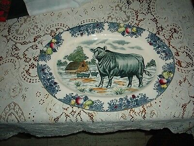 Vintage ***transferware Bull *cow *cattle Pattern** Large 16 1/2 Inch**1 Of Kind
