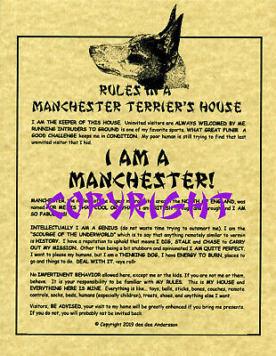 Rules In A Manchester Terrier's House