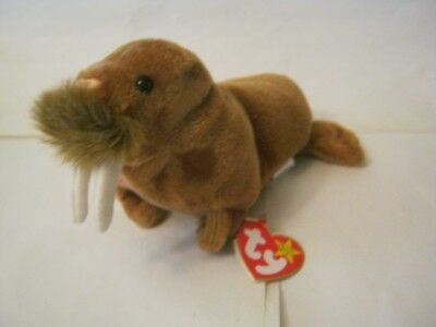 7a19ee49f95 TY BEANIE BABY Paul the Walrus
