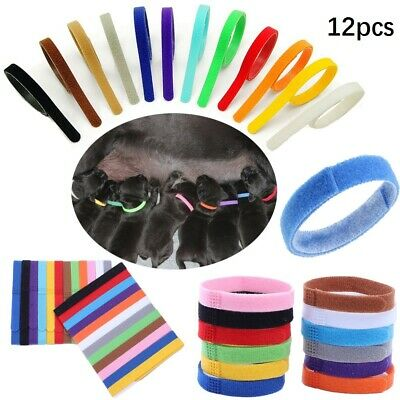12 Whelp ID  Kitten ID Collar Bands For Breeders& Collars Whelping Newborn Puppy