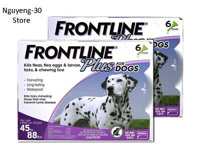 Frontline Plus 6 Pack For Large Dogs 45 - 88 lb - 12 Month Supply