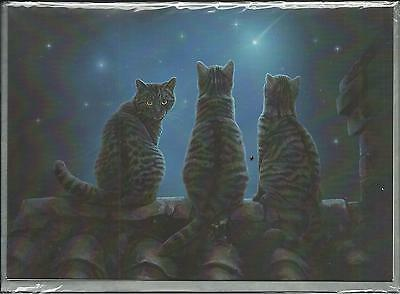 Wish Upon A Star Greeting Card By Lisa Parker- Blank Greeting Card