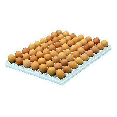 Egg Setter Tray - Chicken - 80 egg (Durable, Incubation, Hatcheries)