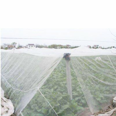 UK Mosquito Garden Bug Insect Netting Barrier Bird Protect Plant Net Mesh  Hot