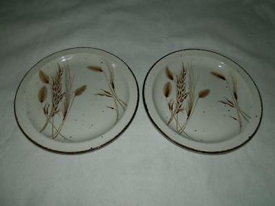 "2 Midwinter England Wild Oats Dinner Plates 10 1/2"" Pair B"