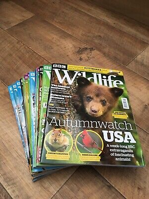BBC Wildlife magazines - 13 issues from April 2018 - March 2019 + Spring edition