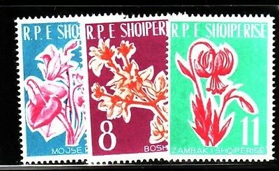 ALBANIA Sc 595-97 NH ISSUE OF 1961 - FLOWERS