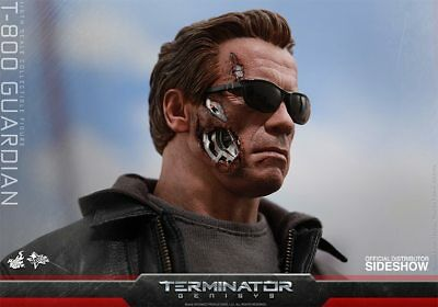 Terminator Genisys~T-800 Guardian~'Arnold'~Sixth Scale Figure~Hot Toys~Mibs