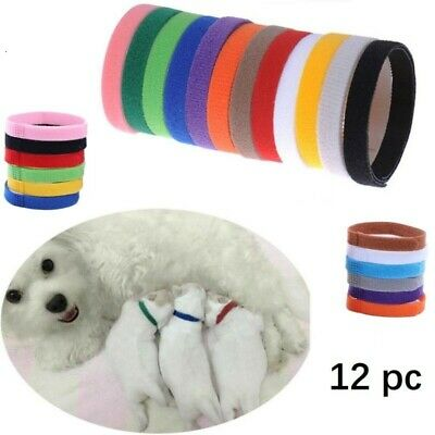 12 WhelpIDcollars - Whelping Puppy & Kitten ID Velcro Collar Bands  For Breeders