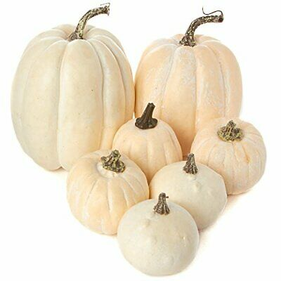 7 Assorted Size Harvest Off White Artificial Pumpkins & Gourds