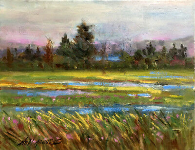 "Adirondack Mountain Marshlands New York 11x14"" Oil on canvas by Hall Groat II"