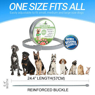 Adjustable Dewel Flea and Tick Collar  Dogs 8 Month Protect Small Large Medium