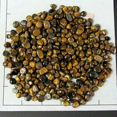 TIGEREYE GOLDEN 1//2 lb bulk stones 35-45 pkg Gold medium tumbled