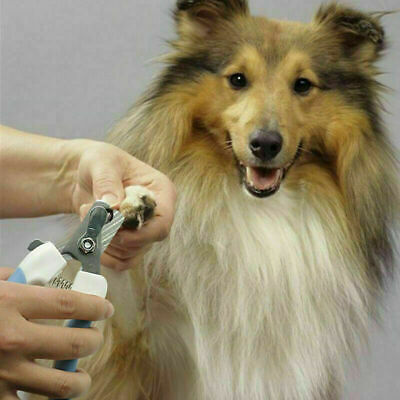 Pet Dog Cat Nail Paw Claw Clippers Scissors Puppy Trimmer Tool Grooming Pup File
