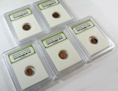 Slabbed Group of 5 Ancient Roman Widows Mite Sized Bronze Coins c 50 BC - 400 AD