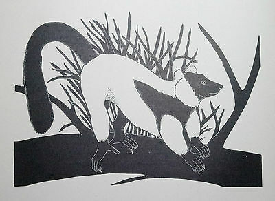 RUFFED LEMUR : B&W Art Deco Wild Animal Print of a 1920s Wood-cut By DAGLISH