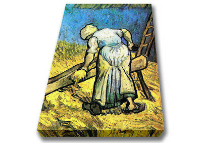 Van Gogh A Farmer Cutting Hay Classic Artists Canvas  A1 Size 02398