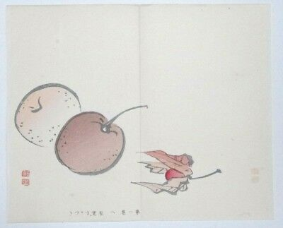 PERSIMMON & PHYSALIS FRUIT : ORIGINAL MEIJI JAPANESE WOODBLOCK PRINT By GYOKUSHO