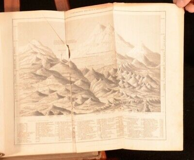 c1840 2Vol Oliver Goldsmith A History of the Earth and Animated Nature Illus