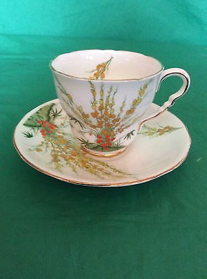 Broom Royal Stafford Bone China England Cup & Saucer