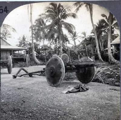 Guam WATER BUFFALO DRAWN CARTS MISSION HOME GROUNDS Stereoview 16401 ve554 nt