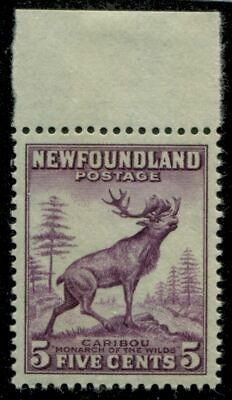 Newfoundland 191a SG  MNH VF 5c 1932-37 Issue [N3812] CV=$30.00