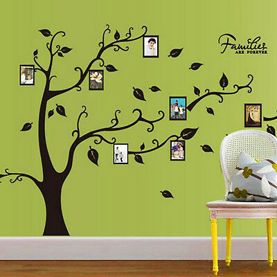 PD Wall Decal Sticker Large Vinyl Photo Picture Frame Removable Family Tree US
