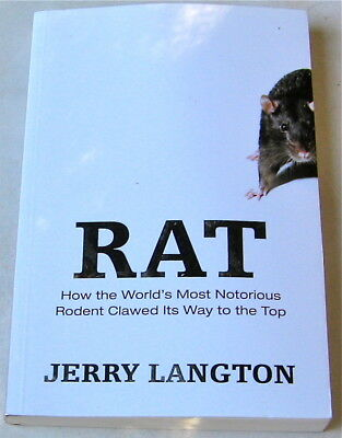 Rat Book Rat How The World's Most Notorious Rodent Clawed Its Way To The Top