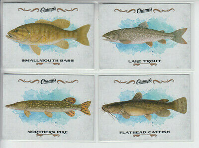 15/16 UD Champs Lake Trout Fish card #F-14