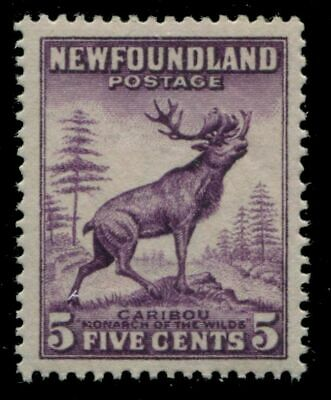 Newfoundland 191a SG  MNH VF 5c 1932-37 Issue [N3580] CV=$30.00