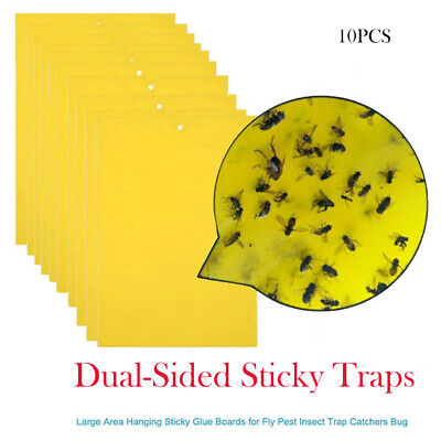 10 x Large Yellow Greenhouse Sticky Traps - Catch Multiple Flying Insect Pests