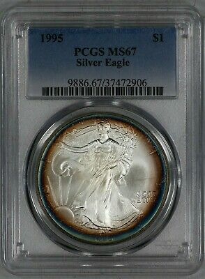 1995 American Silver Eagle Ase S$1 Pcgs Cert Ms 67 Mint State Rim Toning (906)