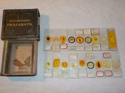 "Antique German Prepared Microscope Slide Box & 18 Original Slides ""a.e.g. 1886"""