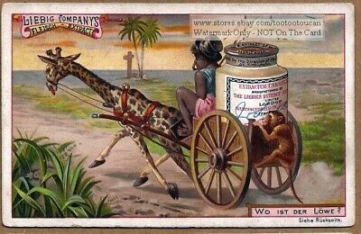 Child's Game - Where is the Hidden Lion? c1895 Trade Ad  Card
