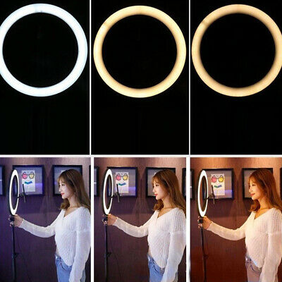 26CM Studio Live Led Ring Light For Phone Selfie Light Beauty Photograph+ Triopd