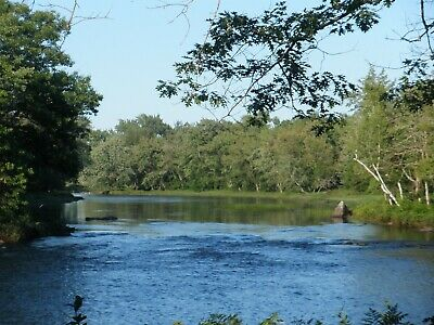 Camp in Maine 20.5 acres 1150 ft of riverfront Passadumkeag River $110,000 OBO