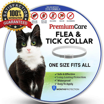 8 Month Protective Flea and Tick Collar for Cats Seresto Health all  Size Free