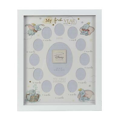 Disney Dumbo Magical Beginnings Photo Frame My First Year Baby Gift