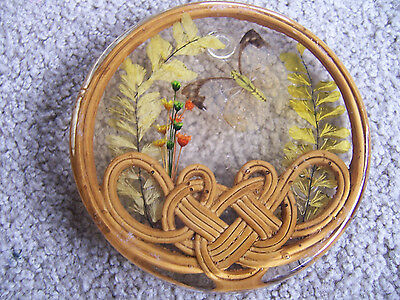 Vintage Acrylic Lucite Bamboo TRIVET Hot pad Footed Hot Plate Resin BUTTERFLY