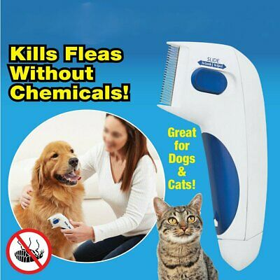 US Pet Brush Dog Brush Comb Electric Flea Comb Kills Fleas Practical