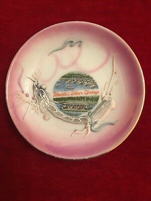 """Vintage Florida's Silver Springs Souvenir 4""""  Plate With Embossed Dragon"""