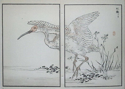 THE CRESTED IBIS : Print Of a JAPANESE WOODBLOCK Bird Print By BAIREI