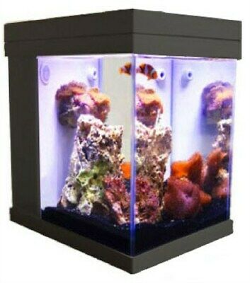 [Black] JBJ Mini Cubey 3 Gallon Pico LED Series Nano Cube Aquarium Fish Tank