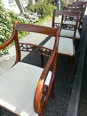 6 Regency/Georgian style dining chairs incl. carver.Brass inlay.
