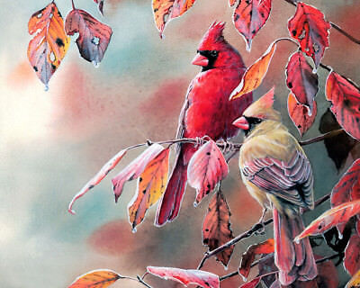 """Canvas Print Northern Cardinal Oil painting HD Printed on canvas 16""""x20"""" L1653"""